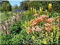 TQ9856 : Flower border in the walled garden at Belmont House by Marathon