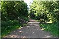 SO8794 : The South Staffordshire Railway Walk by Bill Boaden