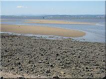 NT1977 : Sandbanks at Cramond by M J Richardson