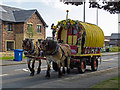 NT0875 : Daisy and her horse-drawn caravan charity journey : Week 27