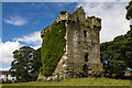 M2852 : Castles of Connacht: Shrule, Mayo - revisited (4) by Mike Searle