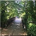 SK3770 : Footbridge over Holme Brook by David Lally
