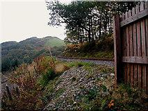 SN7377 : By the Vale of Rheidol Railway by John Lucas
