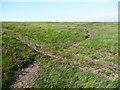 SE0213 : Path crossing the public footpath on Burne Moss, Marsden by Humphrey Bolton