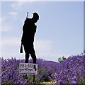 TQ2761 : Silent Soldier at Mayfield Lavender by Peter Trimming