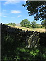 SD7366 : Boundary Stone and Ingleborough by John S Turner