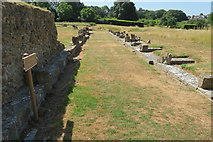 ST5038 : Looking south along the East Cloister by John C
