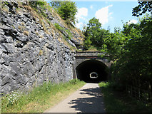 SK1273 : Monsal Trail: western portal of Chee Tor No. 2 Tunnel by Gareth James