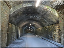 SK1672 : Monsal Trail: inside Litton Tunnel by Gareth James