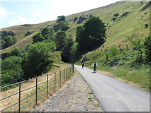 SK1672 : Monsal Trail: between Litton and Cressbrook Tunnels by Gareth James