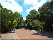 TQ2882 : Inner Circle, Regent's Park by Malc McDonald