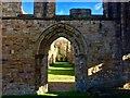 NZ2947 : Finchale Priory by David Robinson
