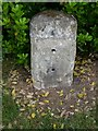 TL4554 : Pivot Bench Mark: Trumpington, Milestone by Brian Westlake