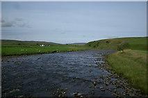 NY8629 : River Tees by David Robinson