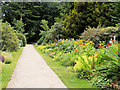 SD4615 : Path with Flower Bed, Rufford Old Hall by David Dixon