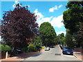 TQ2585 : Redington Gardens, Hampstead by Malc McDonald