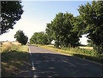 TL1054 : Barford Road by Alex McGregor