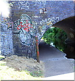SP3380 : North face of Cash's Bridge taking Cash's Lane over Coventry Canal by Roger Templeman