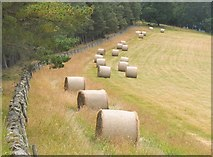 NT2840 : Bales on Falla Brae by Jim Barton