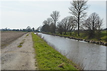 TR0233 : Royal Military Canal and path by N Chadwick