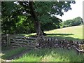 NY6961 : Field gate near Lynnshield by Andrew Curtis