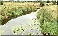 J1659 : The River Lagan at the Newmill Bridge, Moira - July 2018(1) by Albert Bridge