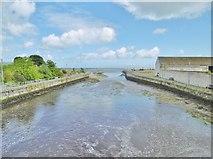 D3115 : Glenarm, Glenarm River by Mike Faherty