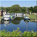 TL5064 : Moorings at Clayhithe by John Sutton