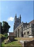 TQ8833 : Tenterden church, from the south-east corner of the churchyard by Stefan Czapski