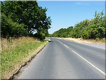 SK1433 : Derby Road at the junction of Flackets Lane by Richard Law