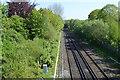 TQ5840 : The Hastings Line by N Chadwick