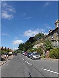 TM3877 : Bungay Road, Halesworth by Adrian Cable
