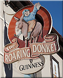 W7966 : The Roaring Donkey on Orilia Terrace, Cobh by Ian S