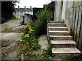 "H4572 : Weeds and steps, ""Tintown"", Omagh by Kenneth  Allen"