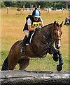 NY4657 : Cumbrian Horse Trials, Warwick Hall - 22 July 2018 (14) by The Carlisle Kid