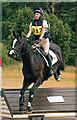 NY4657 : Cumbrian Horse Trials, Warwick Hall - 22 July 2018 (16) by The Carlisle Kid
