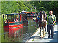 SJ2142 : Horse drawn narrowboat. Llangollen Canal : Week 29