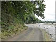 SX6846 : Tidal Road, Aveton Gifford by David Smith