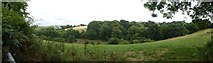 SX6946 : Panorama of valley north of Little Efford Farm by David Smith