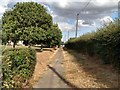 TL6906 : Path near Recreation Ground, Chelmsford  by Roger Jones