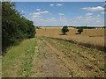 TL2380 : Bridleway past Little Wills Farm by Hugh Venables