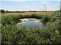 TL2382 : Pond at Brighty's Farm by Hugh Venables