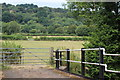 SO3002 : Fields west of canal bridge 61 by M J Roscoe