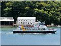 SX8752 : Dartmouth Riverboat by David Dixon