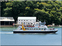 SX8752 : Dartmouth Riverboat by David Dixon