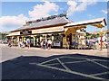 SX8751 : Dartmouth Railway Station by David Dixon