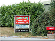 TL8526 : Olivers Plants sign at Broomfield Farm by Adrian Cable