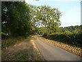 SK1028 : Thorney Lanes, Marchington Woodlands by Christine Johnstone