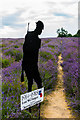 TQ2761 :  Silent soldier at Mayfield Lavender Farm by Ian Capper