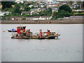 SX9781 : Mussel Harvesting in the River Exe by David Dixon